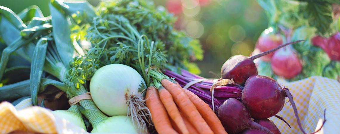 Lg agriculture basket beets 533360