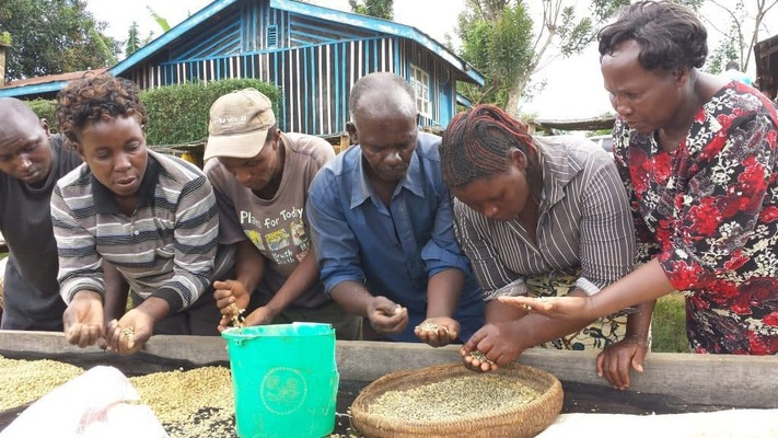 With ethically sourced coffee, Three Stories Coffee works to get to know the farmers in which their coffee is farmed by.